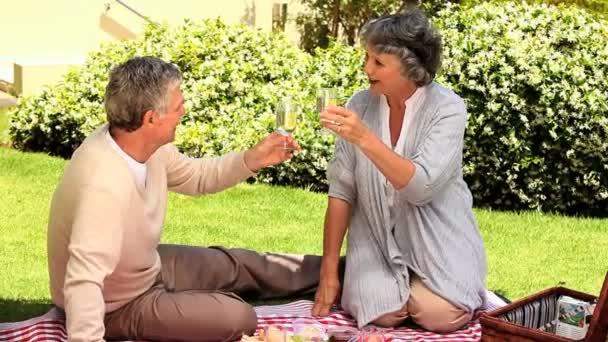 Pareja de picnic tomando una copa de vino — Vídeo de stock