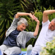 Couple practising oriental exercises in garden — Stock Video
