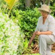 Stock Video: Retired womgardening