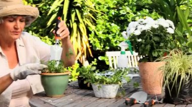 Retired woman potting plants — Stock Video
