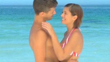 Cute para przytulanie — Wideo stockowe