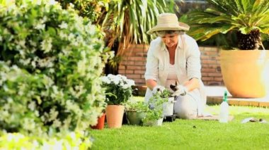 Mature woman potting a plant outdoors — Stock Video
