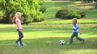 Young boy and his sister playing together with a ball — Stock Video