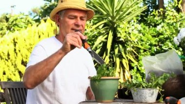 Mature man potting plants in garden — Stock Video