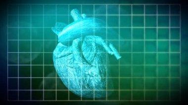 鼓動心臓のアニメーション — ストックビデオ