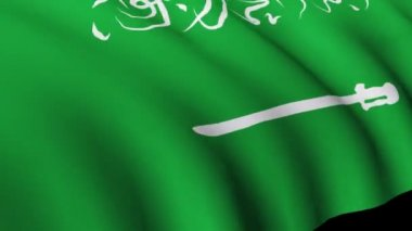 Saudi Arabian Flag in High Definition — Stock Video