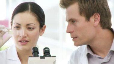 Dwóch chemików zajęty z sondy — Wideo stockowe