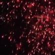 Exploding Fireworks — Stock Video