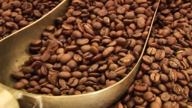 Coffee Beans — Vídeo de stock