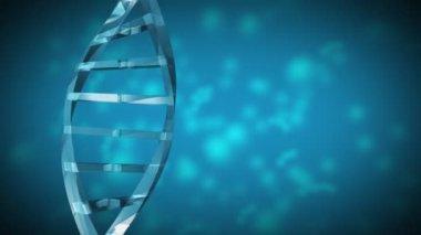 DNA Strand — Stock Video