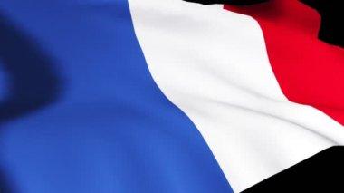3d render van de Franse vlag — Stockvideo