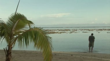 Stock footage - tropisch eiland — Stockvideo