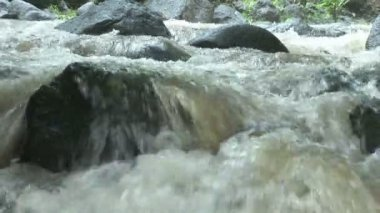 Stock Footage - River — Stock Video