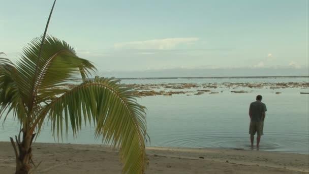 Metraje - isla tropical — Vídeo de stock