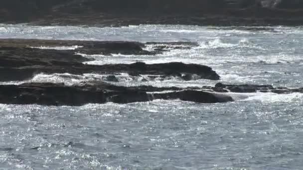 Vagues se brisent contre la côte irlandaise — Vidéo