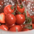 Tomatoes being washed in super slow motion — Stock Video #23690259