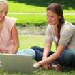 Two girls use a laptop while sitting in the park and then look at the camera — Stock Video