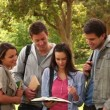 Four friends laughing while pointing at a book as they stand together in a park — Stock Video