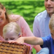 Family looking into a picnic basket — Stock Video
