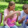 Family eating sandwiches and slices on watermelon during a picnic — Stock Video #23696111