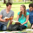Three friends talking and laughing as they study books while sitting in a park — Stock Video