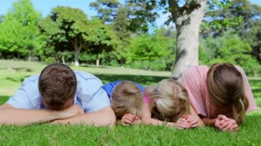 Family lying on the grass together before looking up and laughing — Stock Video