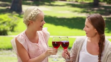 Two women having wine in the park as they talk to each other — Stock Video