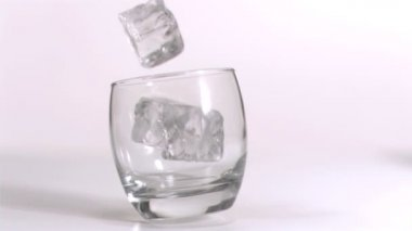 Ice cubes falling in super slow motion — Stock Video