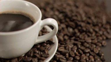 Coffee bean falling in super slow motion — Stock Video