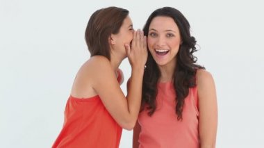 Friends laughing together as they talk to one another — Vídeo Stock