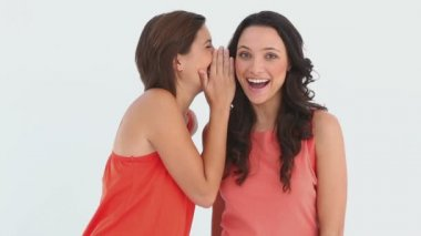 Friends laughing together as they talk to one another — Wideo stockowe