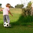Child playing with a ball — Stockvideo
