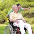 Nurse walking an old man in wheelchair — Stock Video