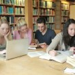Students learning in a library — Vídeo Stock