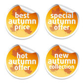 Offer sale autumn stickers — Stock Vector