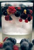 Cocktail — Stockfoto