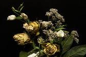 Dead flowers — Stock Photo