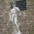Copia statua David - Stock Photo
