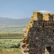 Stock Photo: Fragment of Castle of Acquadda. Sardinia. Italy