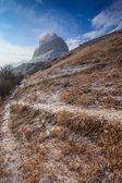 Winter landscape with a trail — Stock Photo
