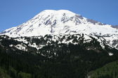 Majestic Mount Rainier — Stock Photo
