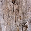 Oak board — Foto de Stock