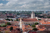 Look at the Vilnius' Castle Top '. Lithuania. — Stock Photo
