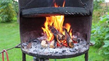 O fogo na grelha. — Vídeo Stock
