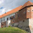 Stock Photo: Castle in Sandomierz.