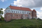 Castle in Sandomierz. — Foto Stock