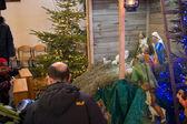 Christmas crib — Stock Photo
