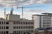 Cranes in Gdansk. — Foto Stock
