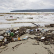Polluted coast  — Stock Photo #47322625