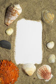 Frame with sea decoration — Stock Photo